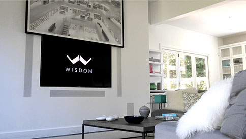 Wisdom Audio product